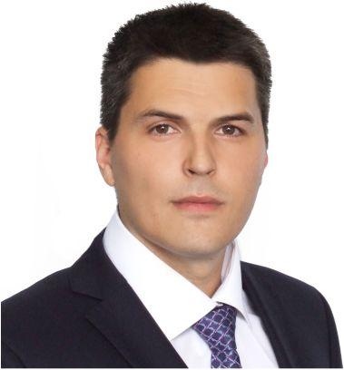 ГРЕЧИШНИКОВ Илья Александрович